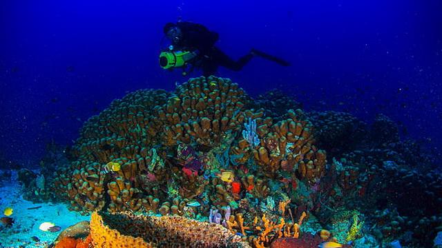 Wisata Pulau Morotai