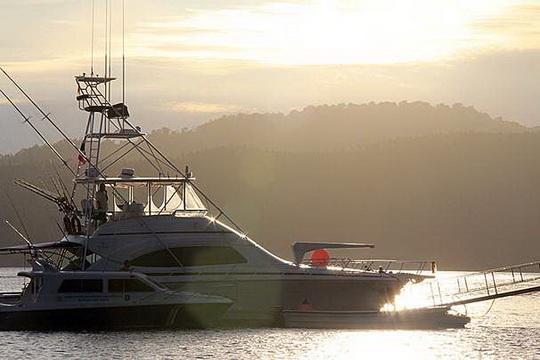 Sail Indonesia